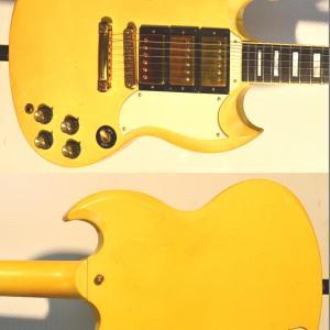 Dsc 0438 trop jaune