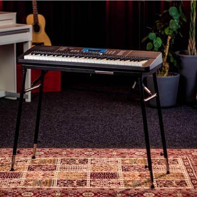 Clavier MEDELI arrangeur 61 touches - 580 sonorités -200 rythmes *NEUF*